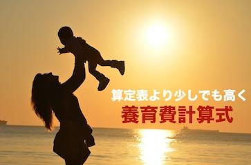 【必見】養育費を少しでも高く!!細かく出せる計算式